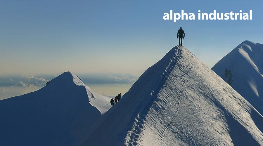 Kunde: Alpha Industrial