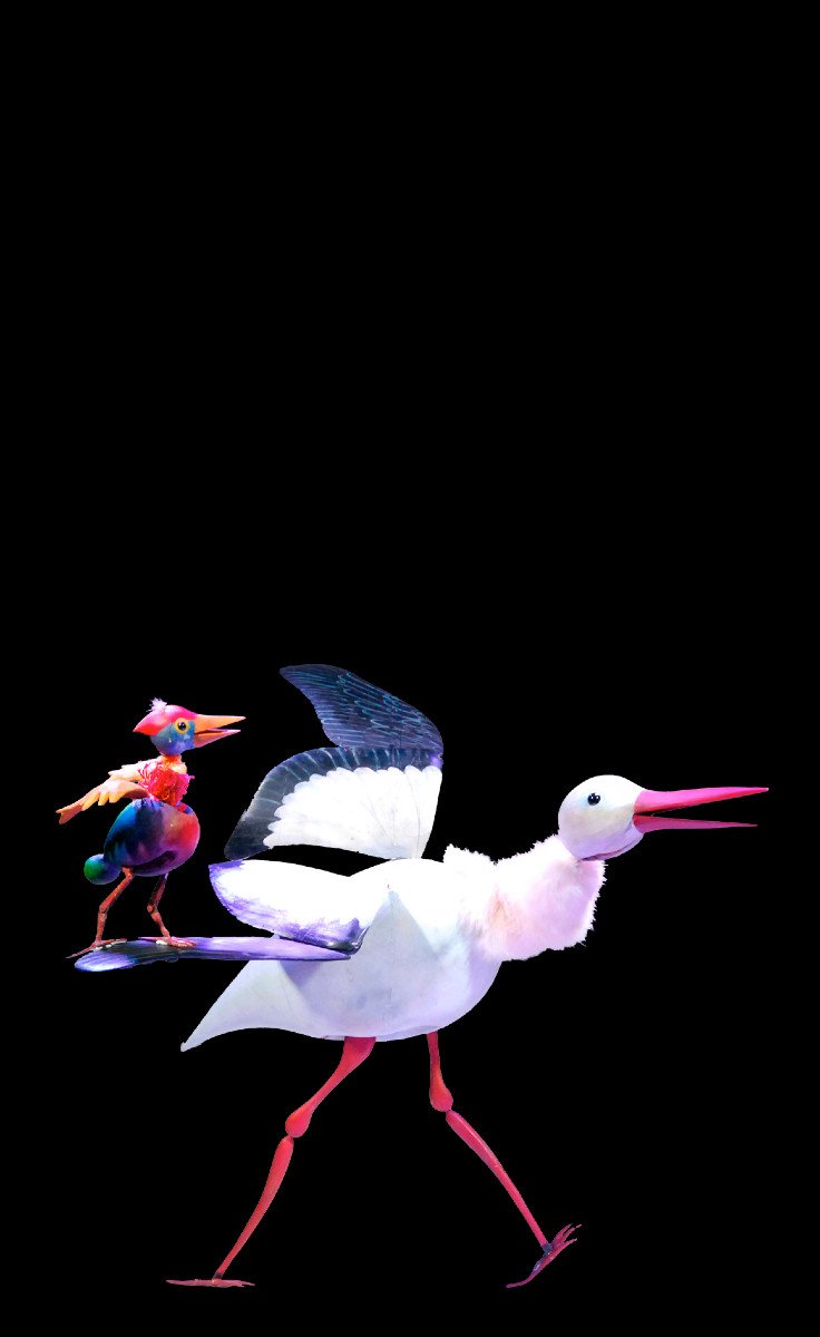 the stork and the cockatoo show a poetic ballet.
