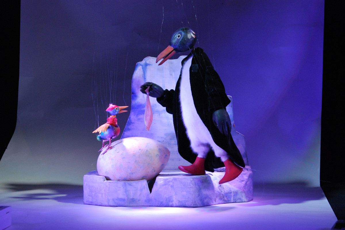 ...in Antartica a penguen, which is just hatching a cockatoo