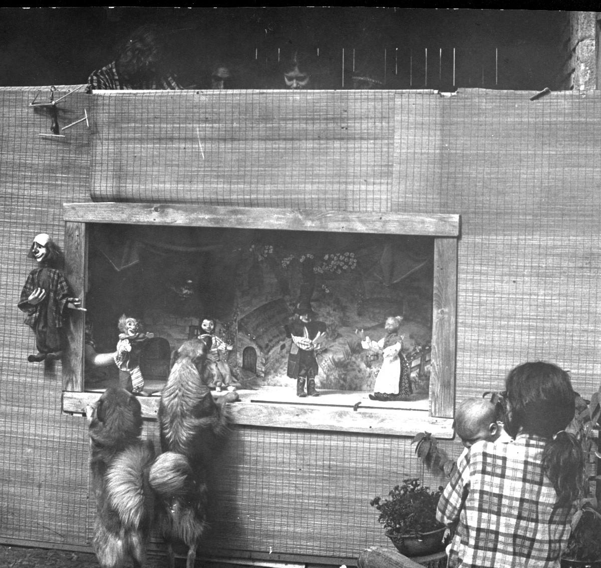 1972 – 77 • Pädagogikstudium an der Universität Marburg, Gründung eines Studententheaters.