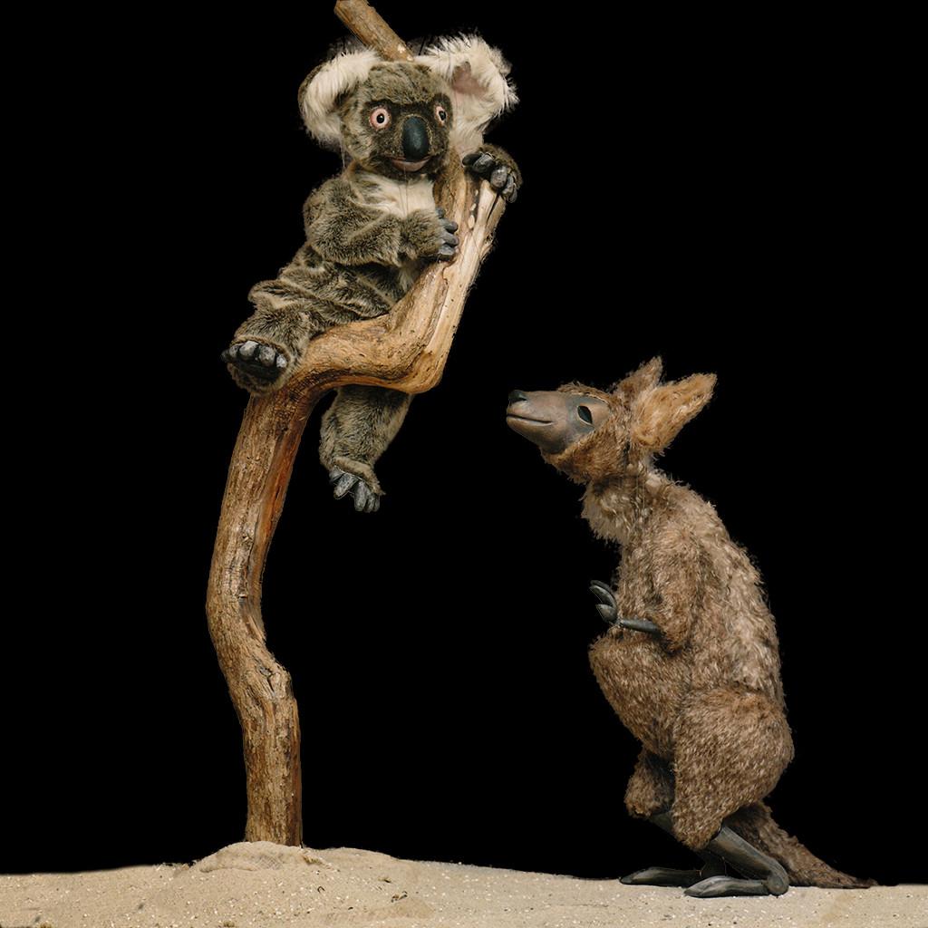 ... in Australia akangaroo and eveb a koala bear