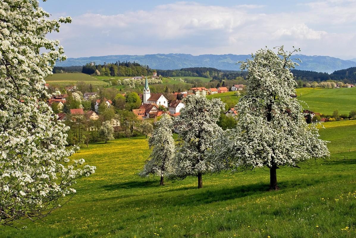 Blick auf Oberreitnau, Foto: ©Wolfgang Schneider