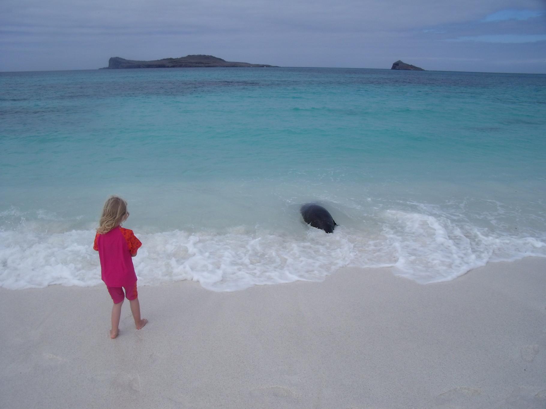 Familie Reise Island