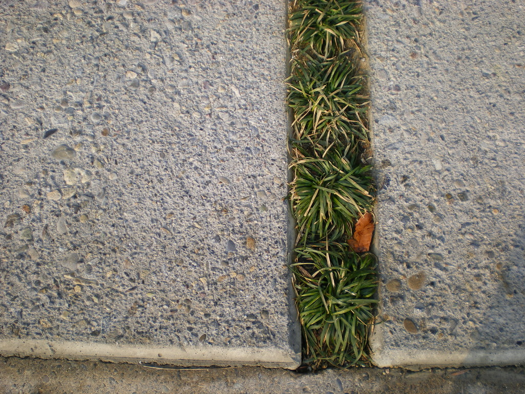 玉龍とコンクリート洗い出し仕上。