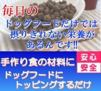 無添加ドッグフード,生肉,いわし,手作り食材料,トッピングにも