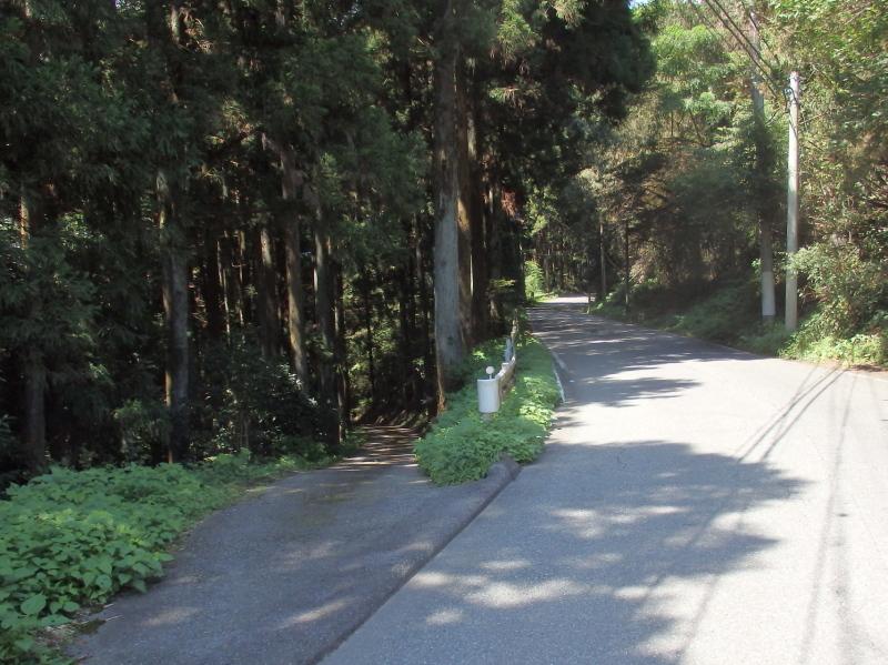 e29-4 県道と街道の分岐