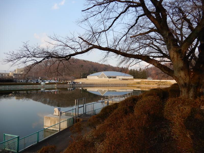 h11-1 岩宿博物館と鹿の川沼