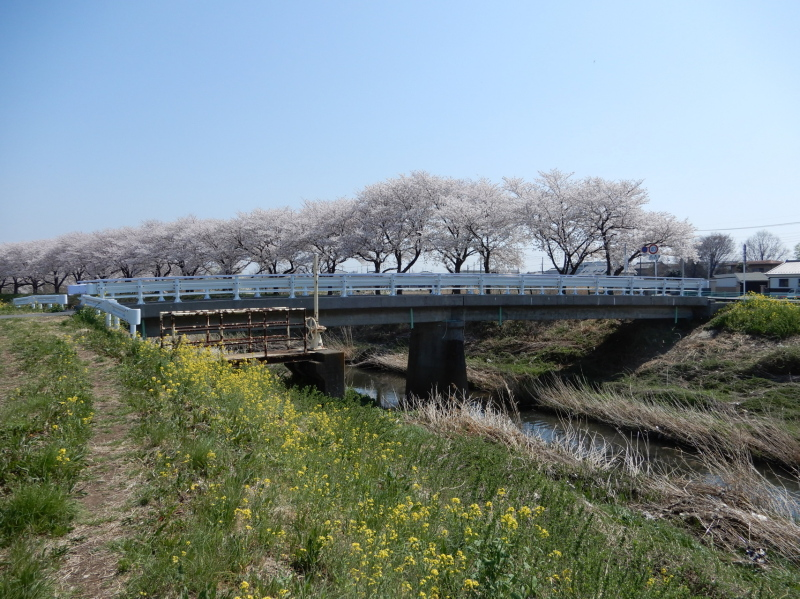 i31 石田川に架かる銅橋(あかがねはし)