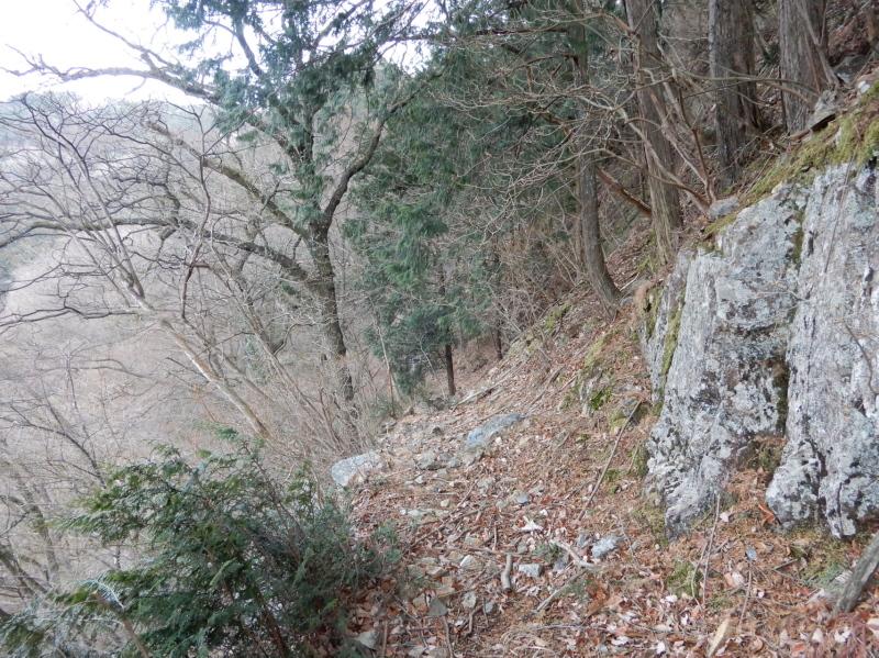 e33-3 十二社神社より e32の分岐に向かう踏み跡