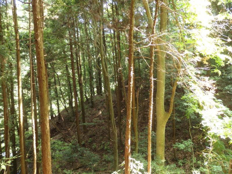 e24-2 旧峰坂沢土橋付近(後記ルートはこの源まで来られる)