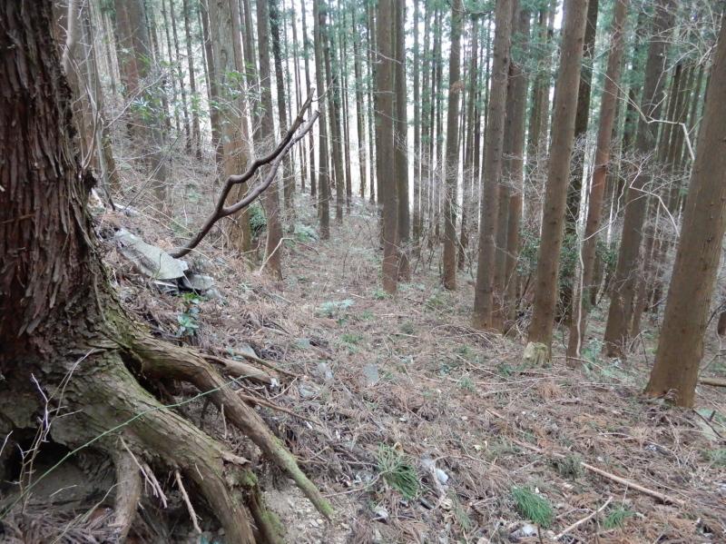 e31-2 奈良坂途中の街道痕跡(桑代方面)