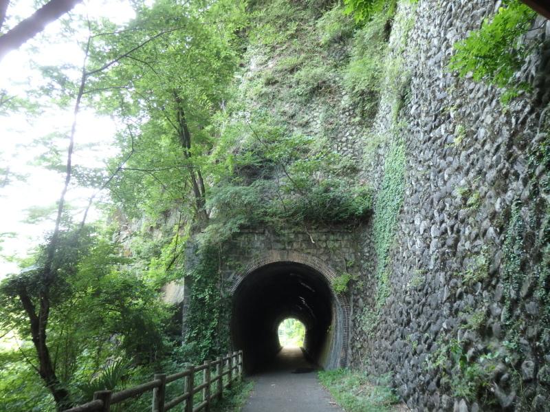 c22-1 琴平トンネル 草木側