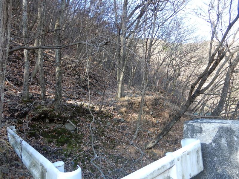 a06-2 野地又橋付近の痕跡