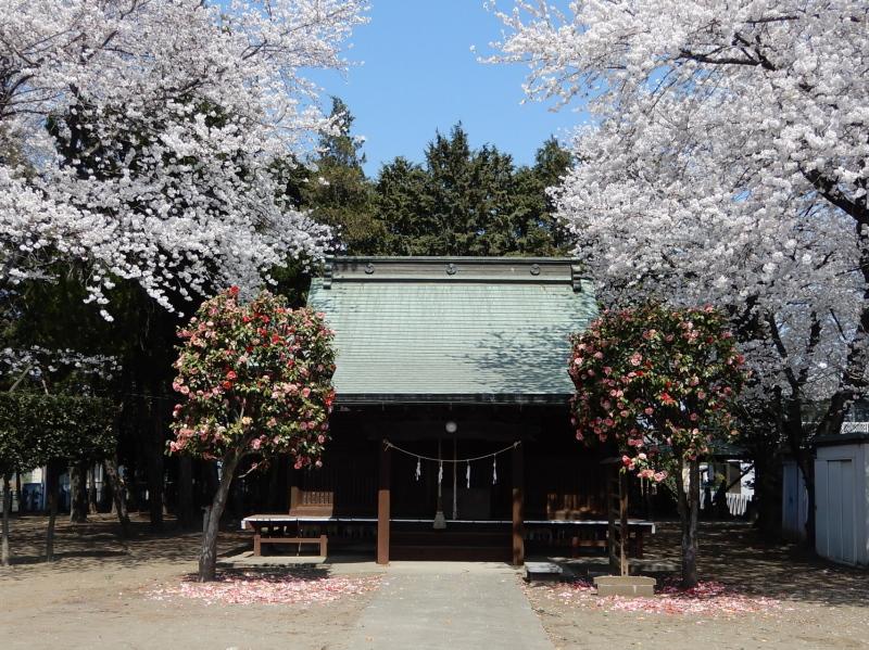 i32-1 亀岡神社拝殿