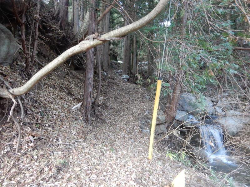 a21-4 巣上沢左岸の道の痕跡