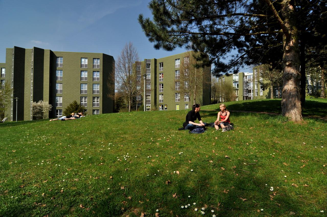 Haus 8b, 8c und 8d - Quelle: Studiwerk Trier