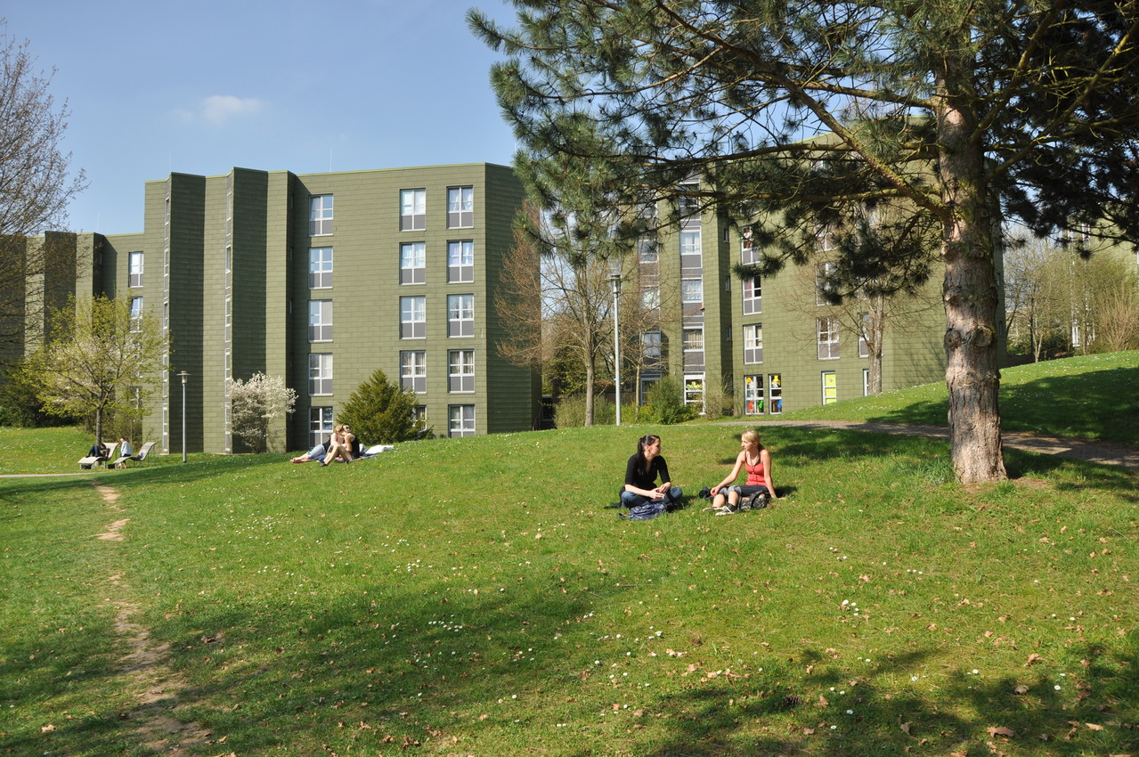 Haus 8c und 8d - Quelle: Studiwerk Trier