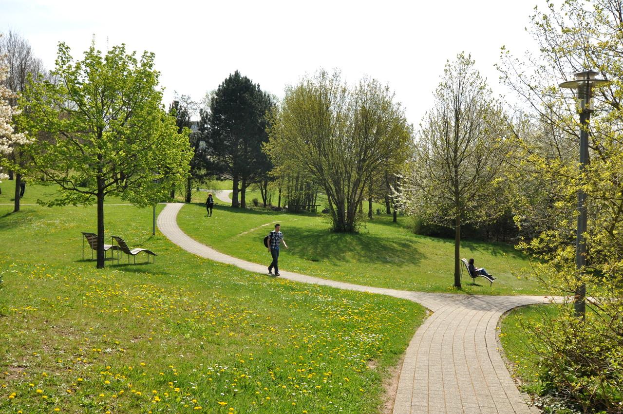 Angrenzender Uni-Park - Quelle: Studiwerk Trier
