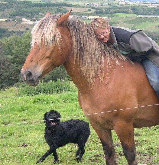 cheval et chien , des compagnons de rando