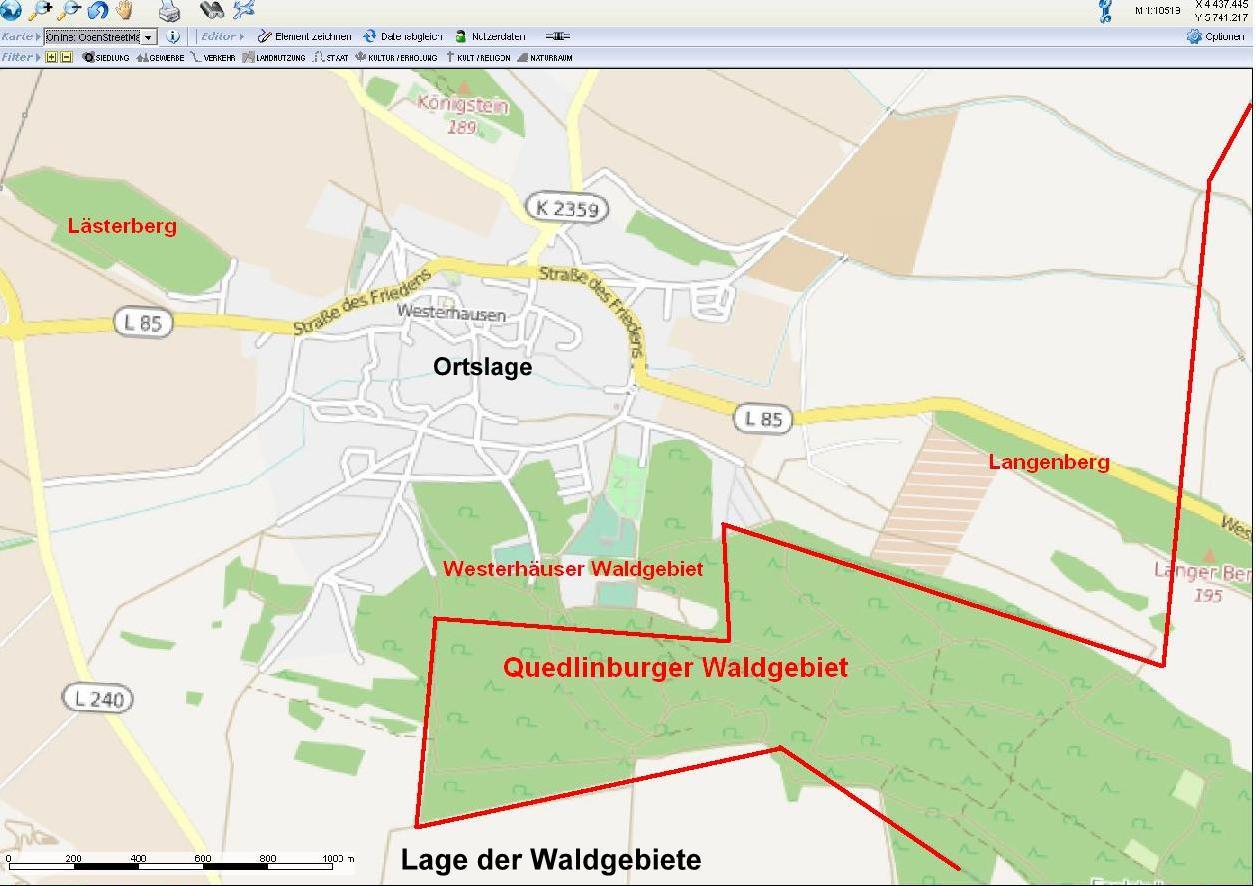 Der Westerhäuser Wald