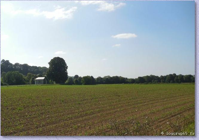 la chapelle au milieu des champs depuis la forêt  (photo loucrup65)