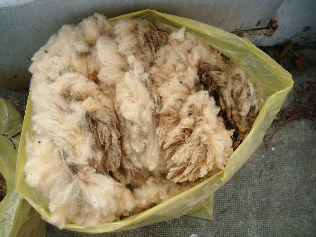 la laine après séchage