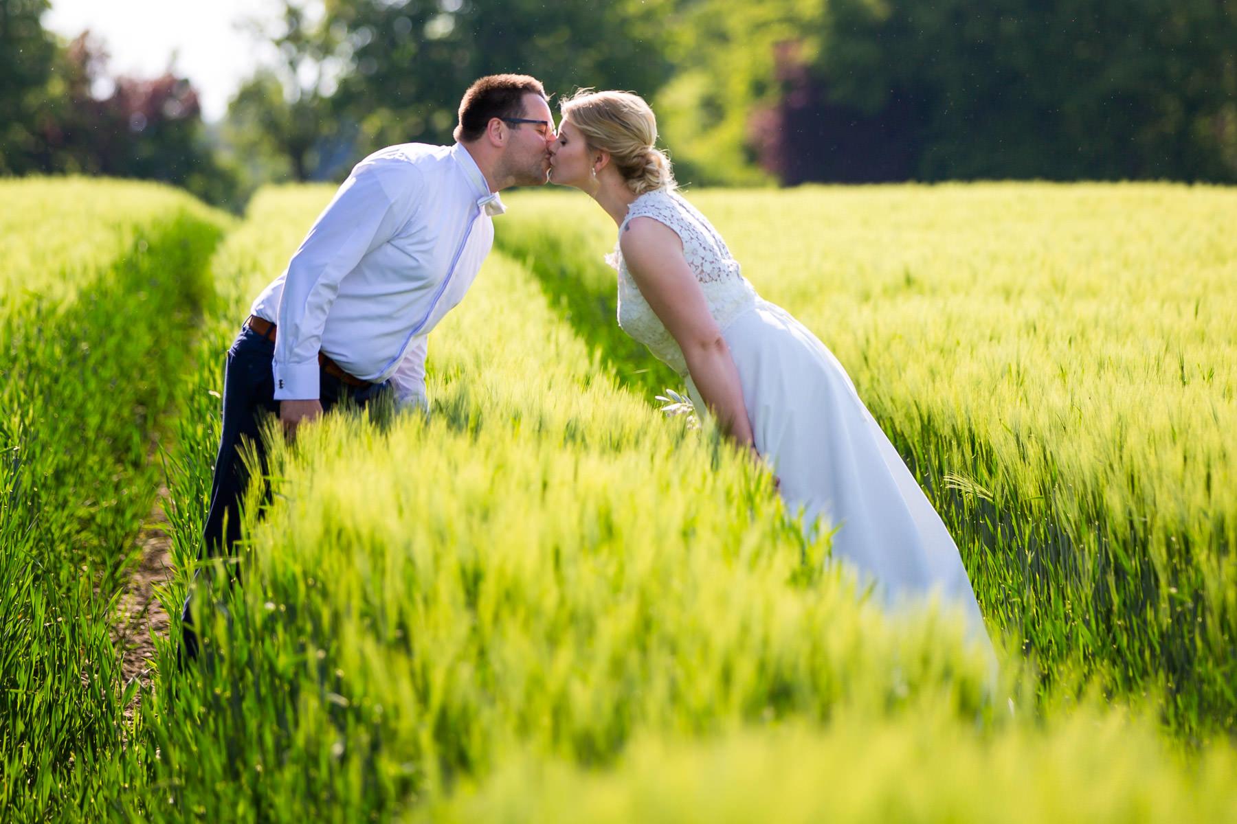 Kuss im Kornfeld