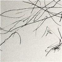 Video Three EP - Syn Nakamura