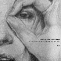 Concrete Poetry (Selected From Project 365 Volume One) - Syn Nakamura