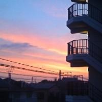 Daybreak - Syn Nakamura
