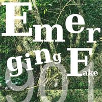 Emerging Fake - 901