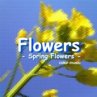 Flowers - Spring Flowers -