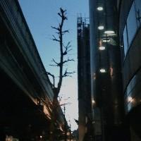 Xtraaa - Syn Nakamura