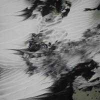 Fiji Islands - Syn Nakamura