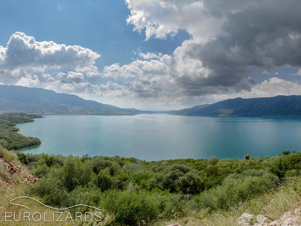 Lake Amvrakia (GR / Etoloakarnania): Habitat of Lacerta trilineata and Algyroides nigropunctatus