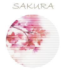 Plissee mit Kirschblüte, Plissees und Wabenplissees mit Beratung und Montage