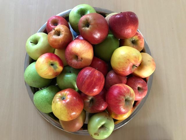 Die Kinder der 1a und 1b brachten jede Menge Äpfel mit!