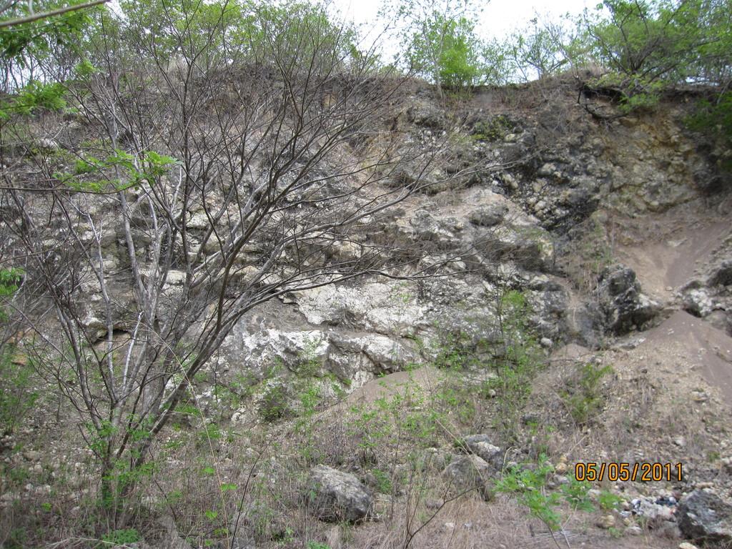 Evaluación Ambiental de ampliación para extracción de carbonato de calcio, Cañas (2011)
