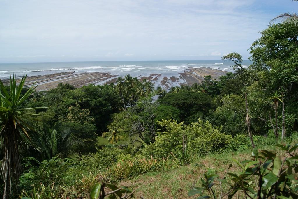 Inventario forestal, Puntarenas (2011)