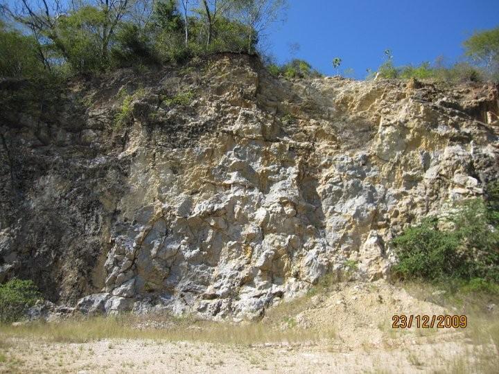Evaluación ambiental de planta de extracción de carbonato de calcio, Cañas (2010)
