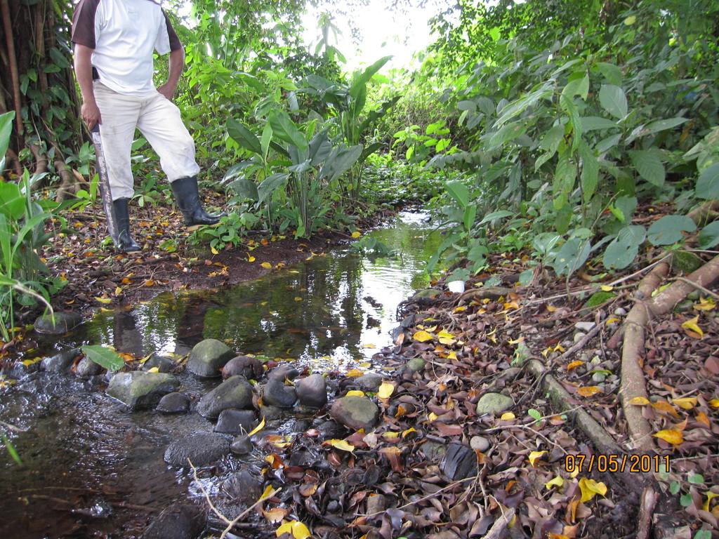 Diagnóstico técnico para aprovechamiento de agua, Guácimo (2011)