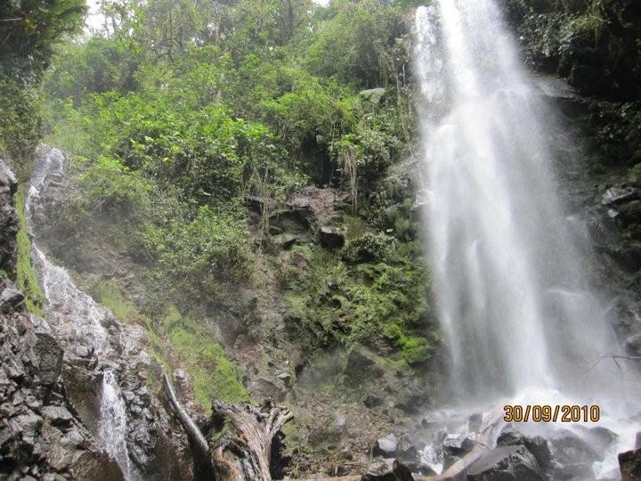 Concesiones de agua, Alvarado (2010)