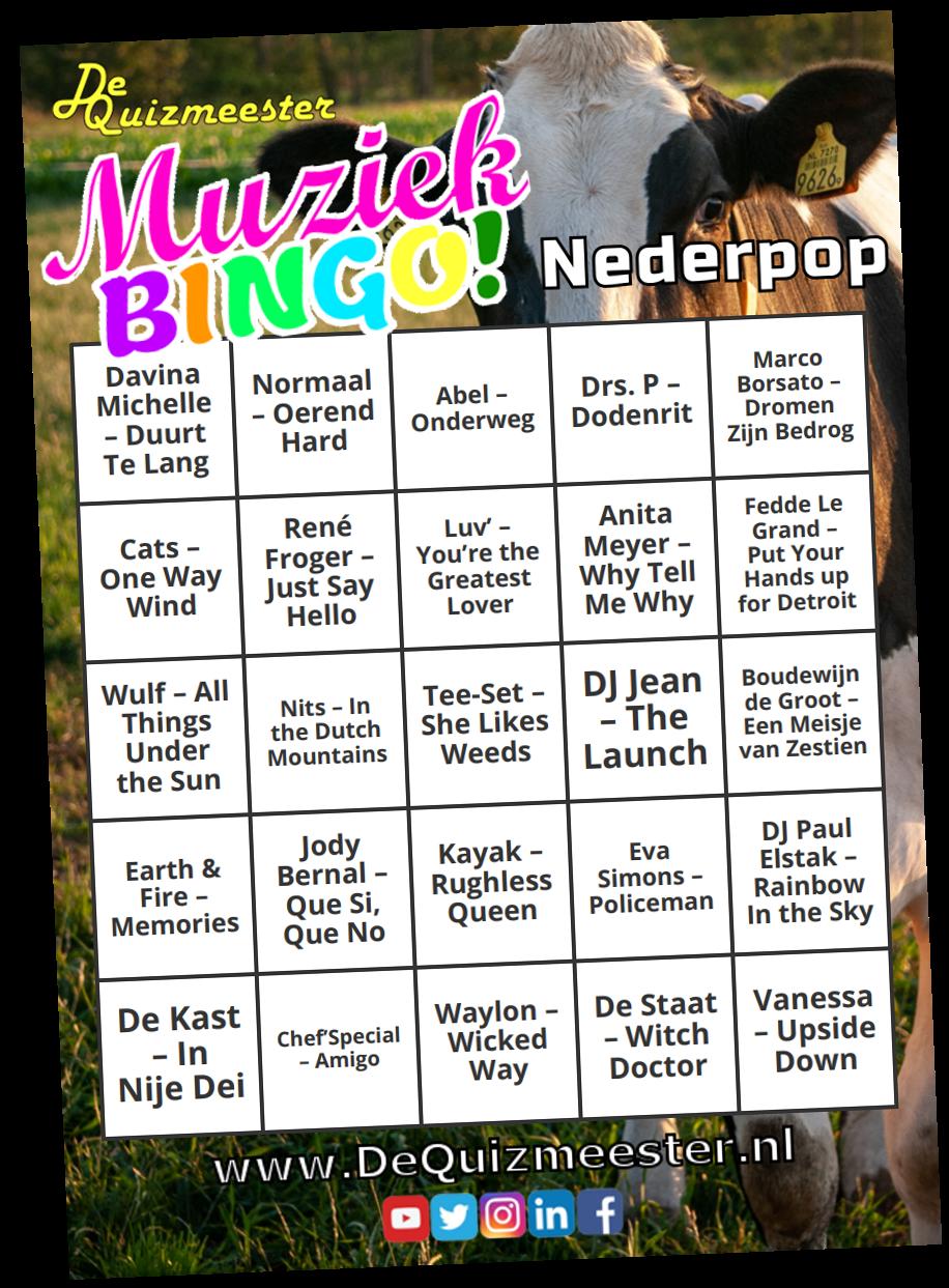 Muziekbingo Nederpop Nederlandse bodem