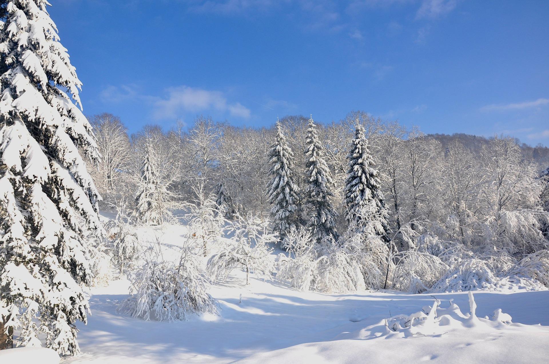 Vacances Neige et Ski dans les Vosges