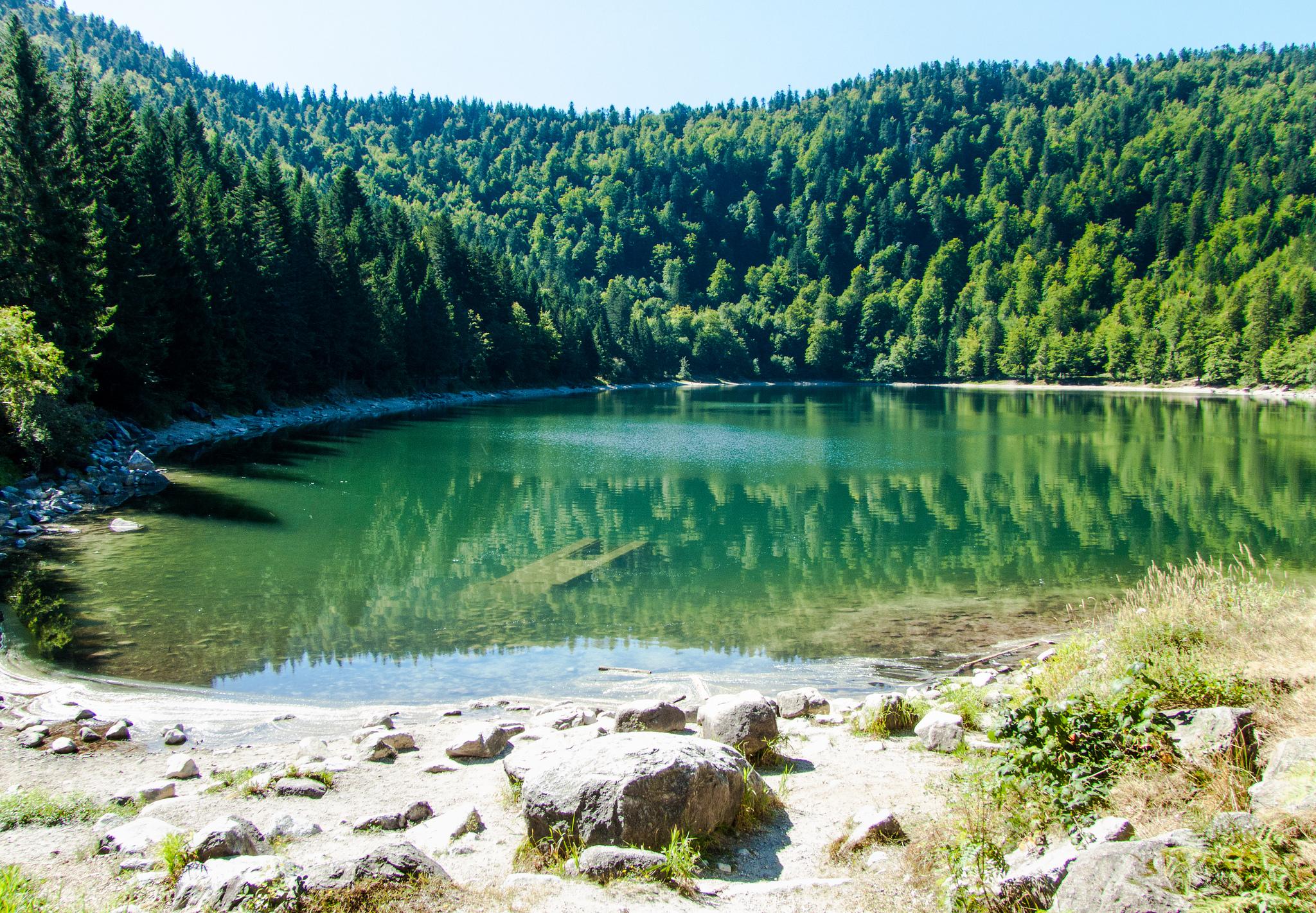 Baignade et détente au Lac des Corbeaux à la Bresse