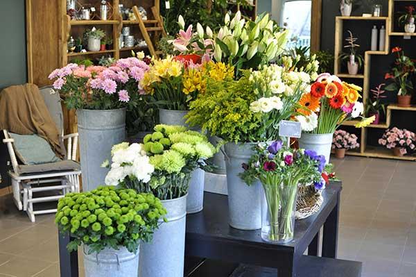 Intérieur, espace fleurs coupées