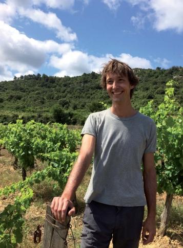 Julien Balluais dans ses vignes à Saint-Pierre des Champs - Photo Stéphanie Baudet