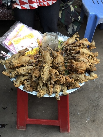 Fried birds as street food in Cambodia