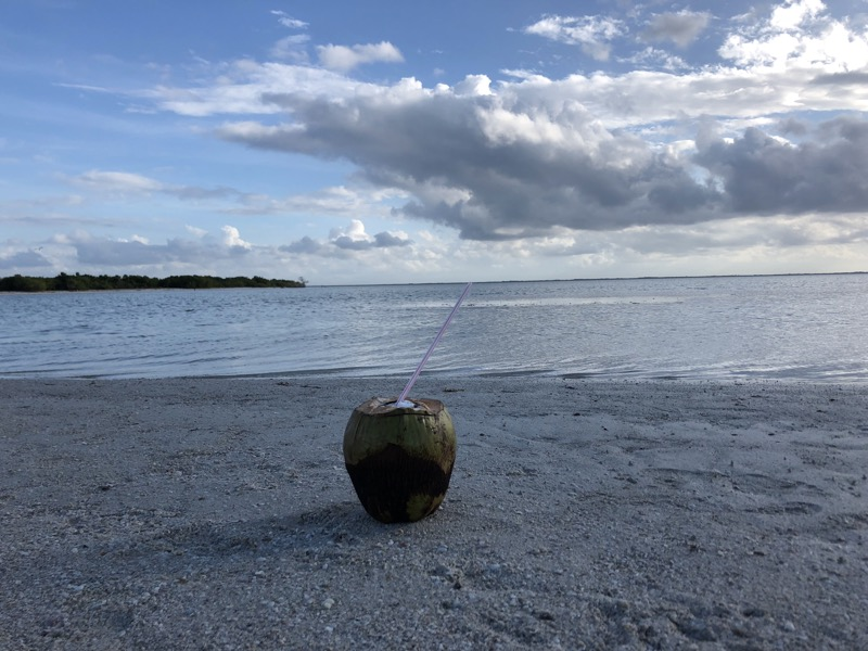 Drinking a coconut at the very west out at Punto Cocco at Holbox