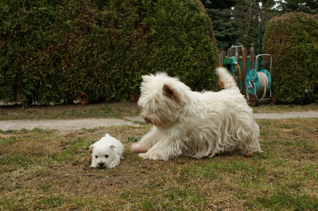 Maggie mit Emma